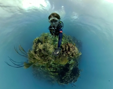 Cruising the Coral Reef - 360bubble GoPro Fusion Underwater Housing